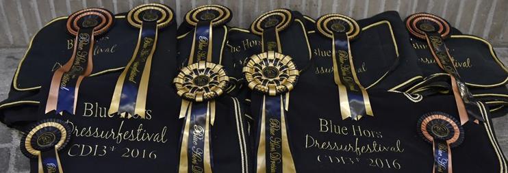 Blue hors dressurfestival